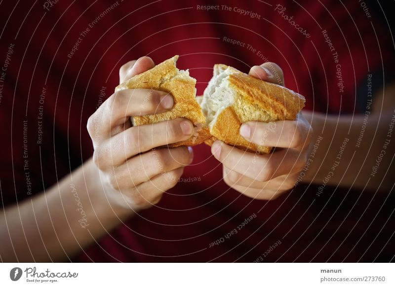 Human being Hand Healthy Food Fresh Fingers Nutrition To enjoy To hold on Delicious Division Bread Roll To break (something) Baked goods Crisp