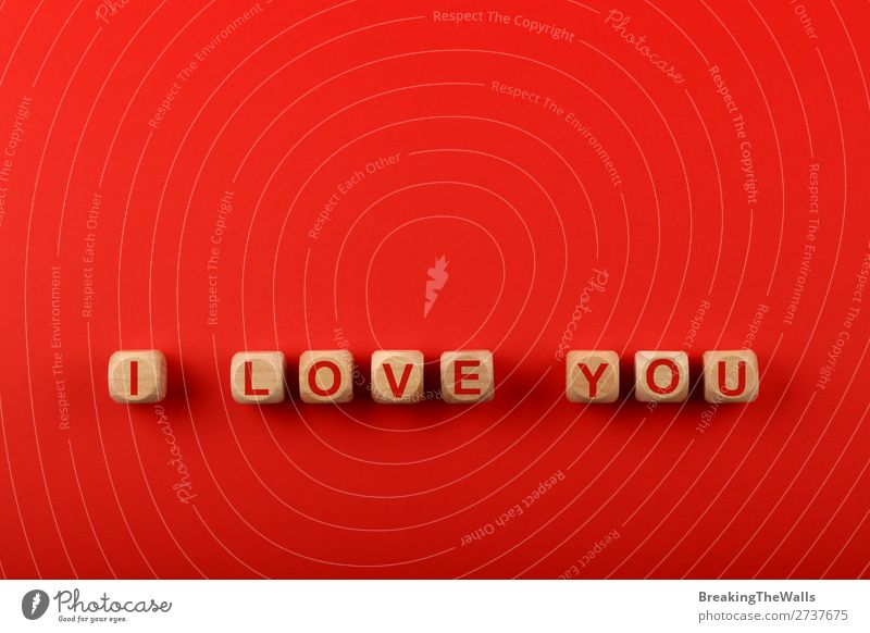 Wooden cubes with I LOVE YOU words over red Design Sign Characters Signs and labeling Love Together Above Red Colour Creativity Art you Word background elevated
