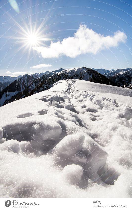 Nature Sun Loneliness Winter Mountain Cold Snow Exceptional Horizon Hiking Beautiful weather Peak Hope Alps Infinity Harmonious