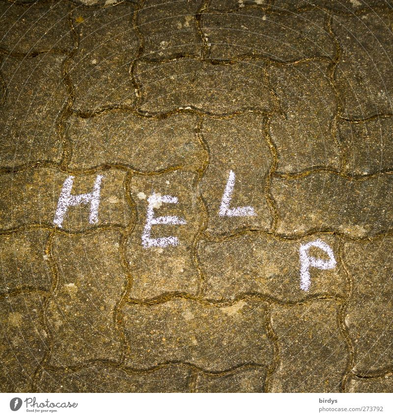Help. Cry for help on cobblestones Characters Illuminate Authentic Distress Paving stone Street painting Seeking help Chalk drawing Subdued colour Exterior shot