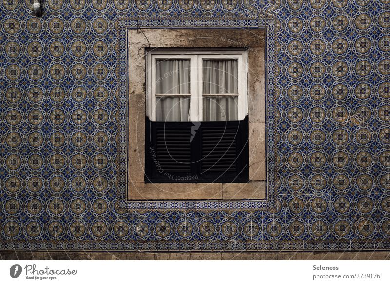 View outside Wall (building) Window Architecture House (Residential Structure) Building Old Colour photo Flow Portugal Vacation & Travel Europe Historic Facade