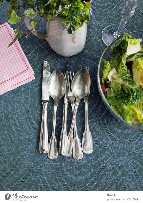 Blue Green Nutrition Pink Knives Lettuce Salad Cutlery Tablecloth Fork Spoon Serviette