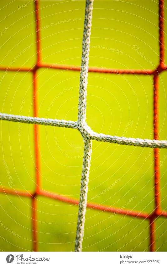 Network Soccer Goal Green Red Sports Symmetry Synthesis Node Knot Bright background 2 Colour photo Multicoloured Exterior shot Deserted Copy Space top