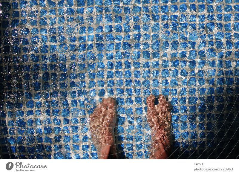Wet Beene Leisure and hobbies Summer Summer vacation Ocean Human being Masculine Feet 1 Wellness Swimming pool Paddling pool Colour photo Exterior shot