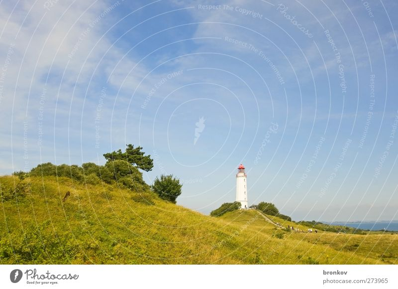 Large lighthouse 002, Hiddensee Landscape Summer Beautiful weather Hill Coast Baltic Sea Deserted Lighthouse Landmark Navigation Discover Relaxation Firm Blue
