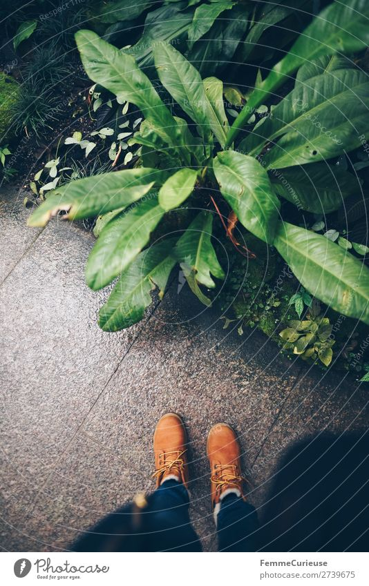 Person standing in greenhouse Feminine 1 Human being Nature Botanical gardens Greenhouse Botany Garden Plant winter shoes Footwear Stone floor Sidewalk