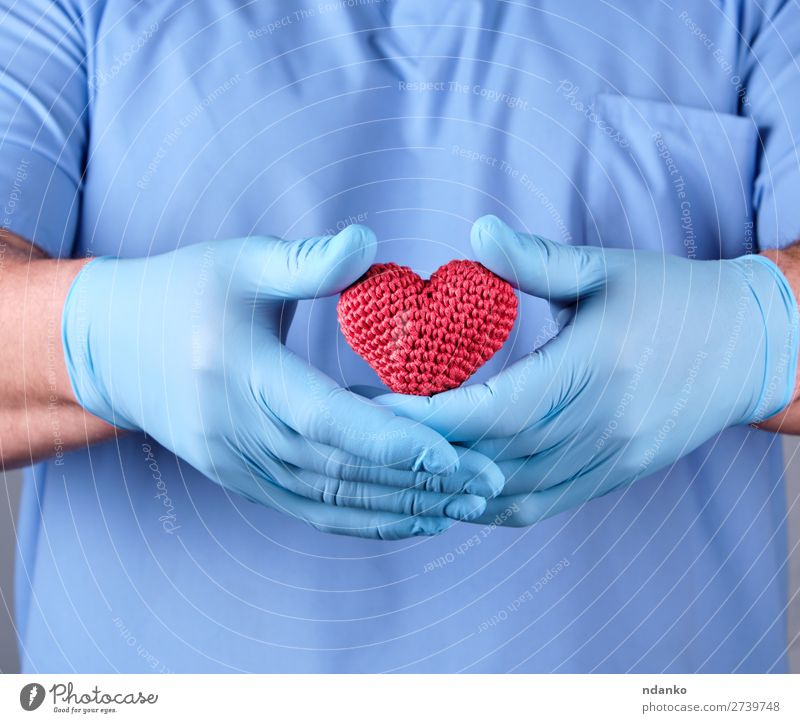doctor with blue latex gloves holding a red heart Healthy Health care Illness Medication Doctor Hospital Human being Man Adults Hand Heart Touch Small Blue Red