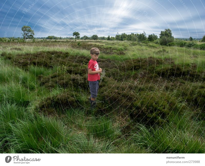 Hiking in the Moor Calm Leisure and hobbies Trip Summer Child 1 Human being 8 - 13 years Infancy Nature Landscape Plant Animal Sky Clouds Horizon