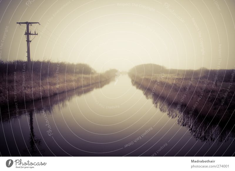 Sky Nature Water Loneliness Calm Landscape Horizon Moody Germany Fog Cable Idyll River Common Reed Electricity pylon Mystic
