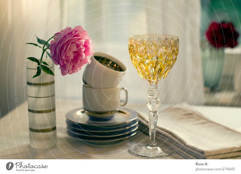 Table cover you III Crockery Plate Cup Glass Living or residing Rose Vase Napkin Colour photo Interior shot Deserted Shallow depth of field
