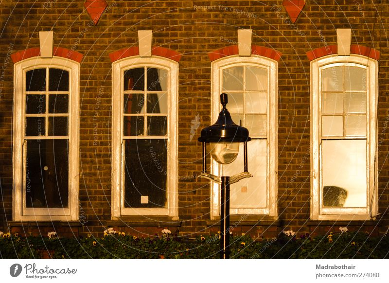 City Old House (Residential Structure) Window Wall (building) Architecture Building Wall (barrier) Facade Living or residing Europe Street lighting Downtown