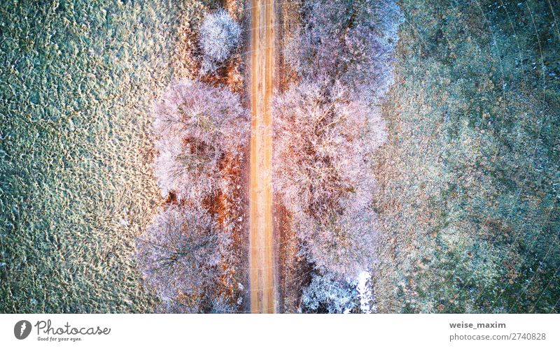 Aerial view of frozen road in early spring Vacation & Travel Nature White Landscape Red Tree Forest Winter Far-off places Street Spring Natural Lanes & trails