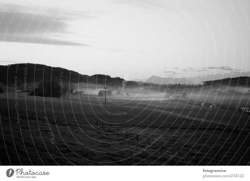 break of dawn Nature Landscape Plant Spring Autumn Fog Meadow Highway Car Mysterious Black & white photo Exterior shot Dawn Shadow Contrast Silhouette