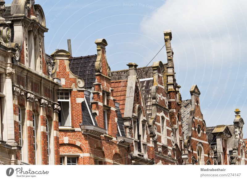 old roof ridges in Leuven, Belgium Sky lions Europe Small Town Downtown Old town House (Residential Structure) Building Architecture