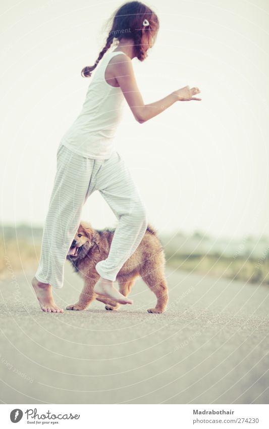 informal childhood Playing Feminine Infancy Life 1 Human being Lanes & trails Brunette Long-haired Braids Pet Dog Elo Animal Baby animal Walking Together