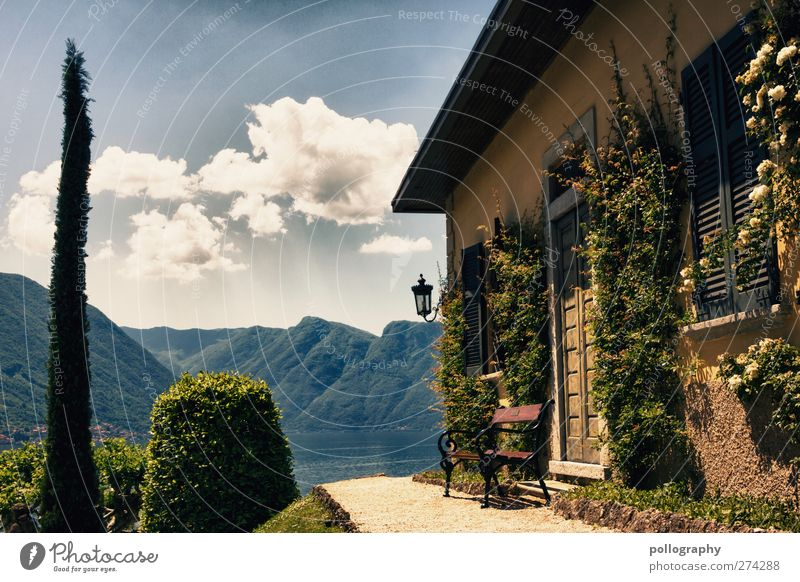 stay for a while (II) Vacation & Travel Trip Summer vacation Nature Landscape Sky Clouds Spring Beautiful weather Plant Bushes Ivy Foliage plant Meadow Forest
