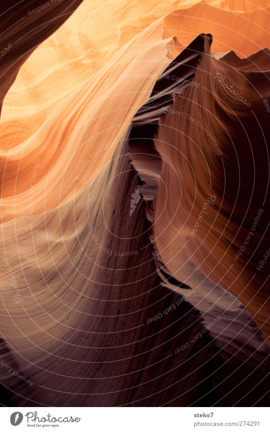 standstill Rock Exceptional Warmth Yellow Gold Undulation Ease Antelope Canyon Subdued colour Exterior shot Abstract Structures and shapes Deserted