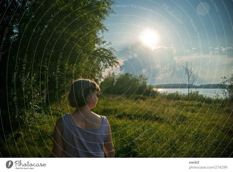 operation Trip Human being Feminine Woman Adults Head Back Arm 1 Environment Nature Landscape Plant Water Sky Clouds Horizon Climate Weather Beautiful weather
