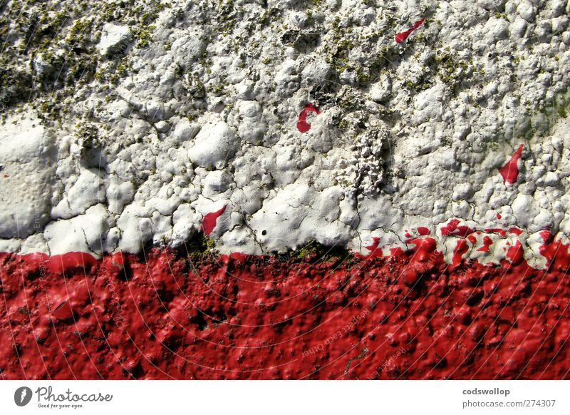anyone for tennis Wall (barrier) Wall (building) Facade Red White Structures and shapes Crack & Rip & Tear Colour photo Detail Abstract Pattern