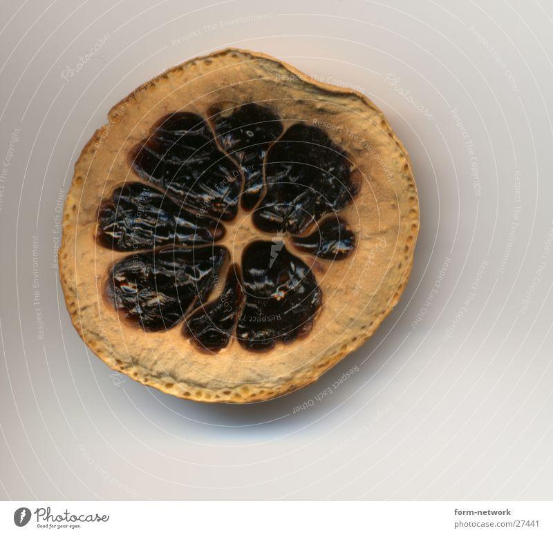 rottened lemon Lemon Dry Fruit Dried Inedible Shriveled Bright background Isolated Image Slice of lemon Putrefy Spoiled