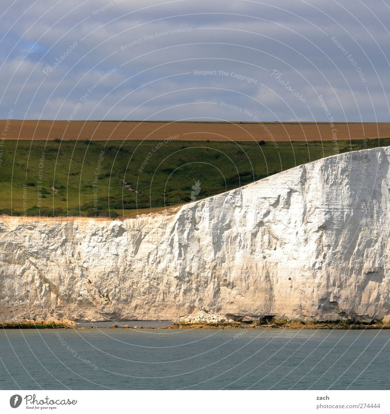 White Cliffs Environment Nature Landscape Water Sky Plant Grass Field Rock Coast Ocean Channel English Channel Island England white cliffs Stone Beautiful Blue