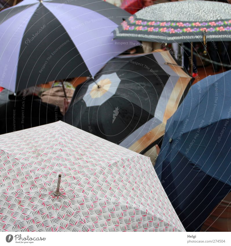 auspices Bad weather Rain Umbrellas & Shades Plastic Pattern Touch To hold on Wait Authentic Exceptional Dark Together Uniqueness Wet Round Blue Multicoloured