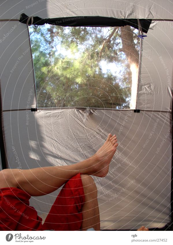 Man Nature Red Vacation & Travel Relaxation Window Gray Dream Feet Legs Leisure and hobbies Pants Camping Toes Tent