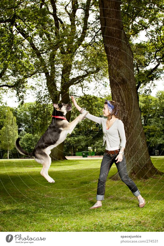 Dog Human being Woman Nature Youth (Young adults) Tree Animal Adults Forest Environment Landscape Meadow Feminine Jump Garden Park