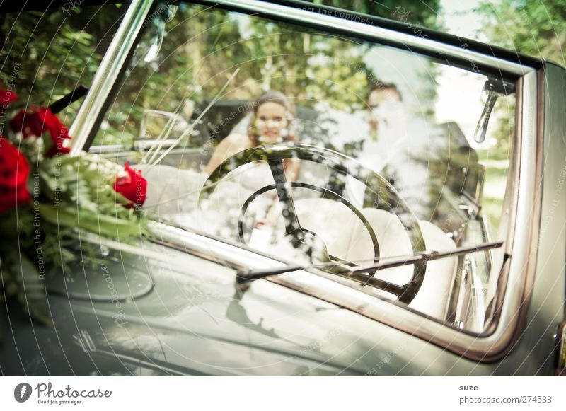 Human being Woman Man Nature Youth (Young adults) Summer Joy Adults Environment Feminine Happy Young woman Car Car Window Feasts & Celebrations Together