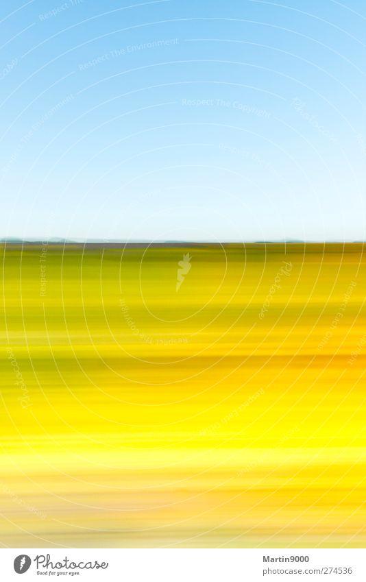 Nature Vacation & Travel Blue Green Summer Sun Relaxation Landscape Flower Far-off places Yellow Grass Horizon Art Air Field