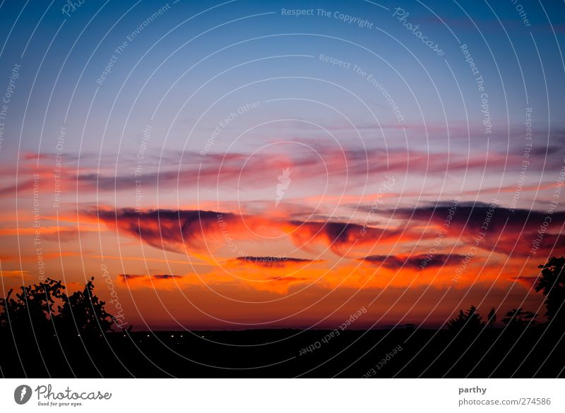 cloud atmosphere Sun Sky Clouds Sunrise Sunset Beautiful weather Dark Warmth Blue Violet Orange Red Black Play of colours Colour photo Exterior shot Twilight