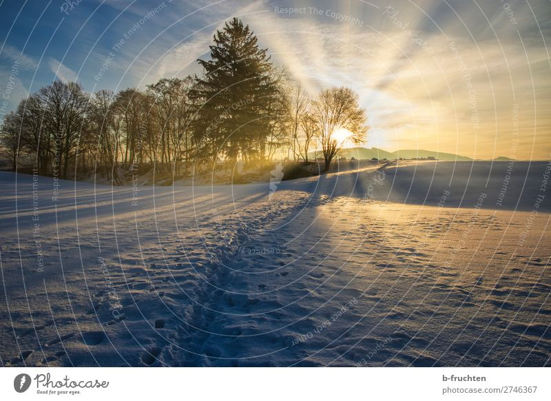 Winter landscape with sunrise Harmonious Well-being Relaxation Calm Snow Nature Sunrise Sunset Sunlight Beautiful weather Tree Forest Hill Footprint Observe