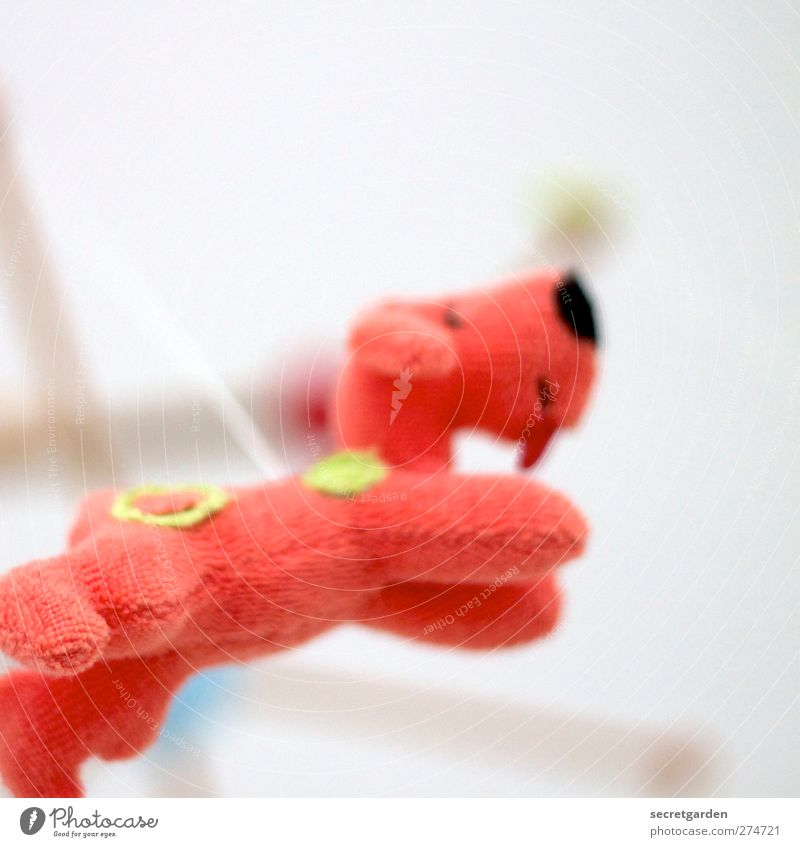 today there are flying terrycloth dogs! Children's game Living or residing Flat (apartment) Room Animal Dog Toys Cuddly toy Decoration Flying Hang Free Bright