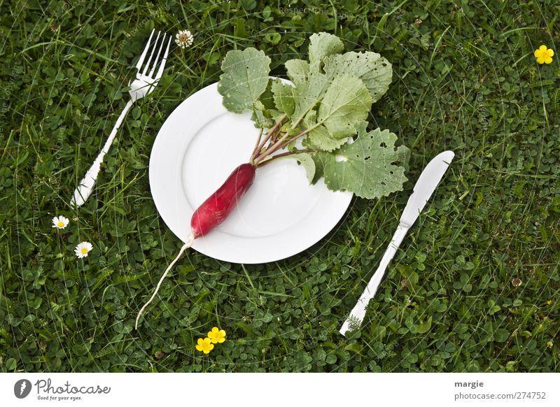 Radish Diet Food Vegetable Lettuce Salad Nutrition Breakfast Dinner Picnic Vegetarian diet Plate Cutlery Knives Fork Healthy Healthy Eating Nature Plant Flower