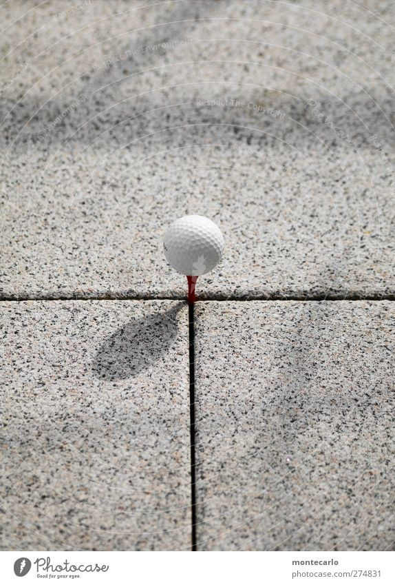 OfficeTerracesGolf Leisure and hobbies Playing Golf ball Stone Plastic Round White Colour photo Exterior shot Close-up Detail Deserted Copy Space top