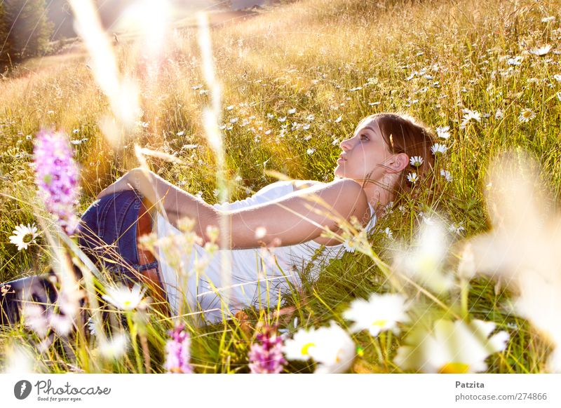 Woman Nature Youth (Young adults) Beautiful Summer Sun Girl Flower Calm Relaxation Meadow Spring Grass Freedom Young woman Dream