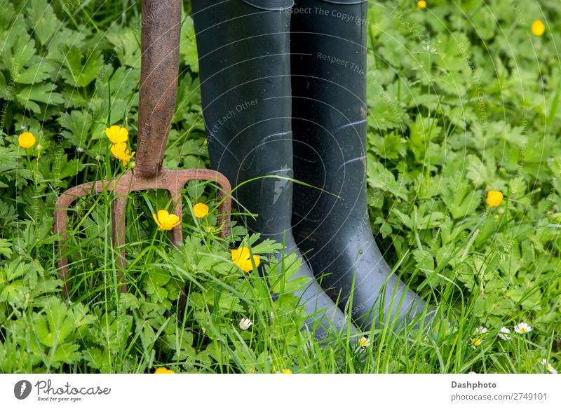Old Garden Fork and Rubber Boots with Weeds and Wild Flowers Leisure and hobbies Gardening Nature Plant Grass Leaf Meadow Rust Yellow Green White