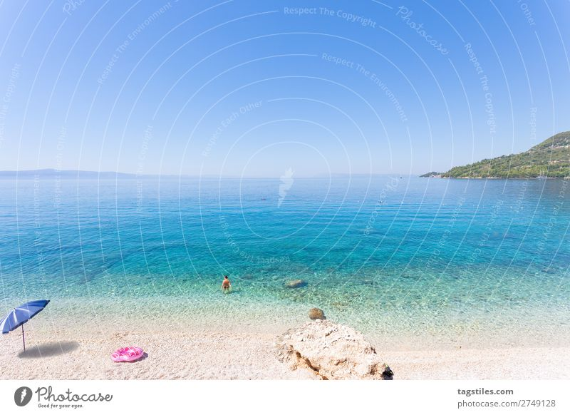 Drasnice, Dalmatia, Croatia, Europe Adriatic Sea Swimming & Bathing Bay Beach Calm Cloudless sky Coast Horizon Idyll Landscape Beautiful Mediterranean sea