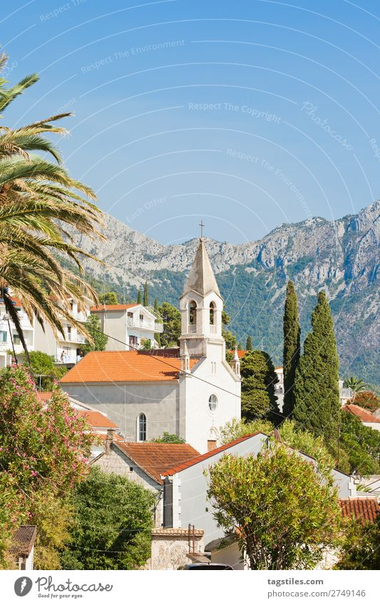 Brist, Dalmatia, Croatia Architecture brist Building Religion and faith Church Cypress Facade Fishing village Hill Historic House (Residential Structure) Idyll
