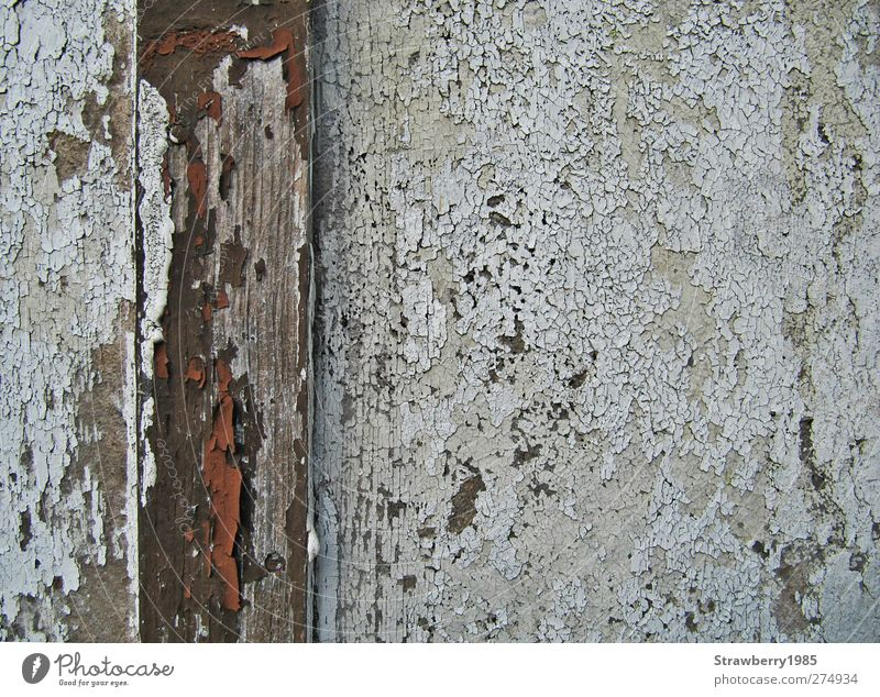 Old White Wall (building) Wood Dye Wall (barrier) Brown Derelict Hut Weathered