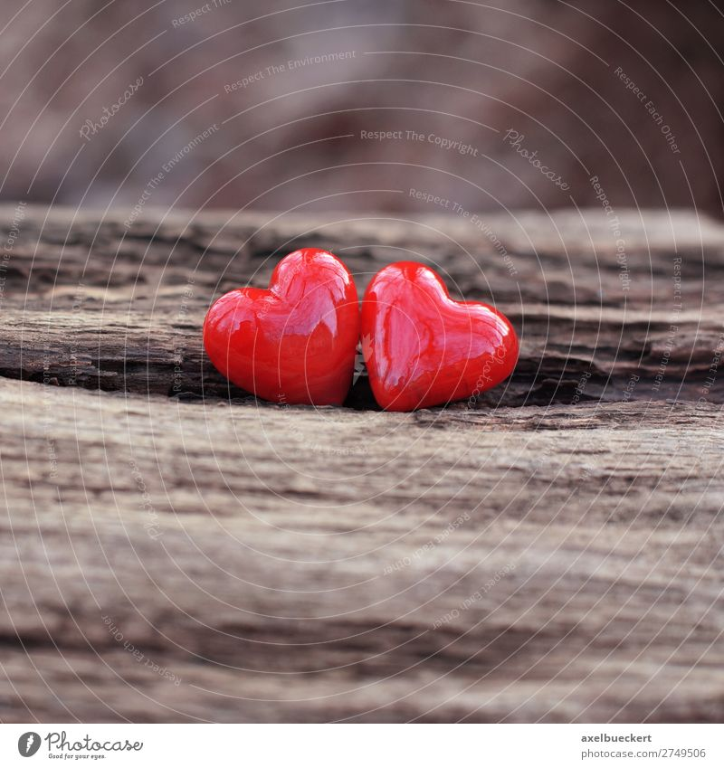 Two hearts for Valentine's Day Wedding Nature Love Spring fever Symbols and metaphors 2 Together Heart Heart-shaped Red Pottery Wood In pairs Betrothal Romance