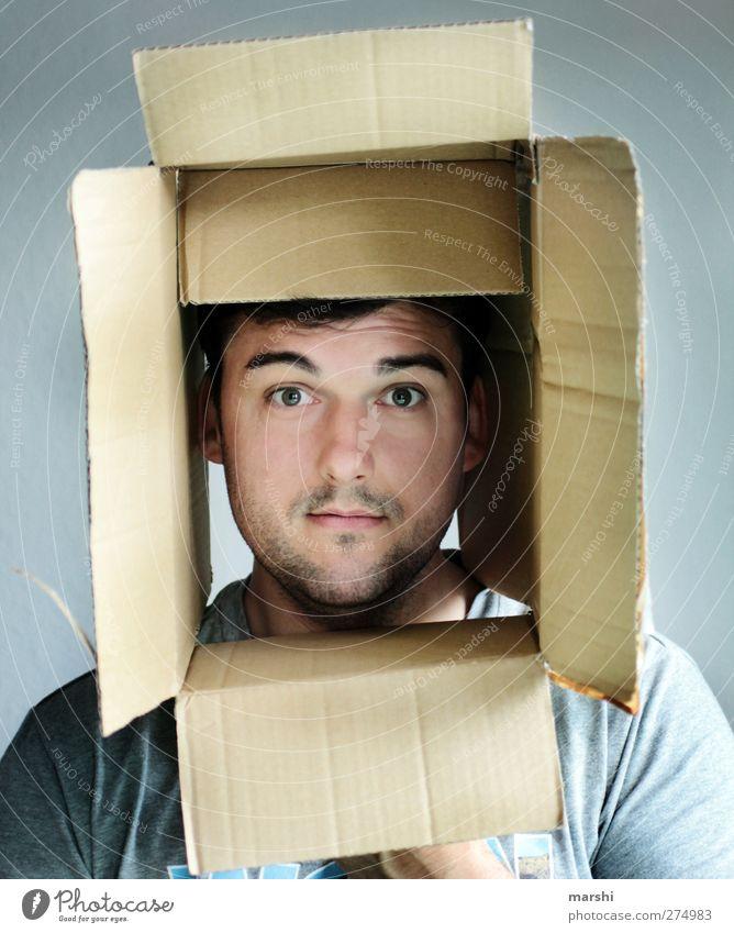Human being Man Adults Face Emotions Masculine Within Cardboard Surprise Crate Sharp-edged Character Expression