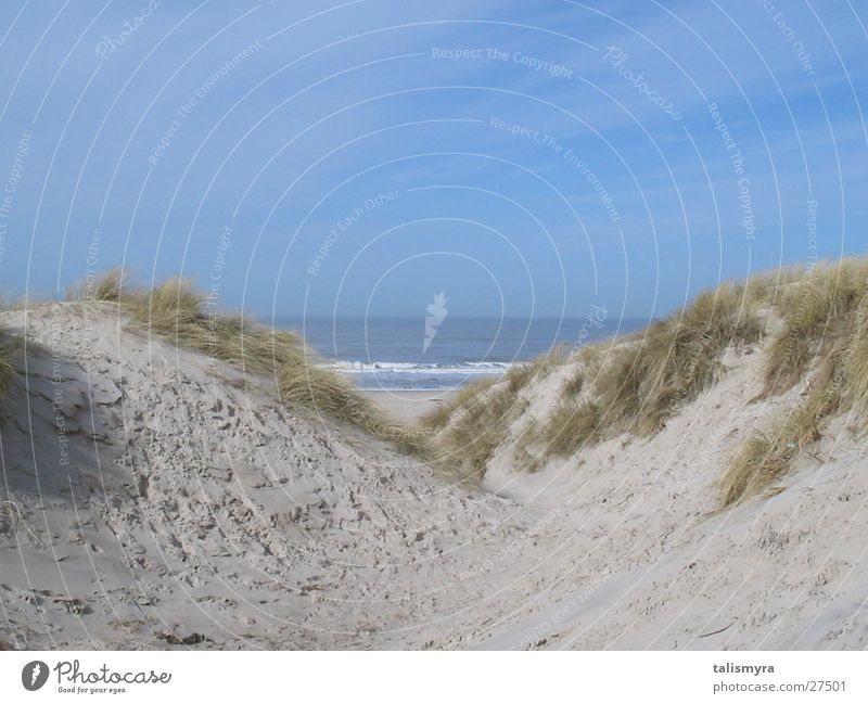 beach dunes Beach Denmark North Sea Beach dune Sand
