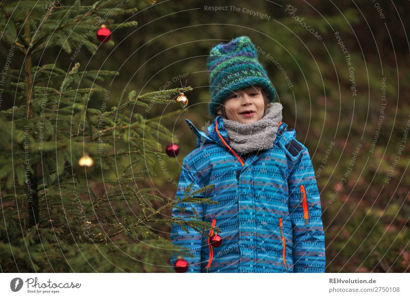 Child standing at a Christmas tree Feasts & Celebrations Christmas & Advent New Year's Eve Human being Masculine Boy (child) 1 8 - 13 years Infancy Environment