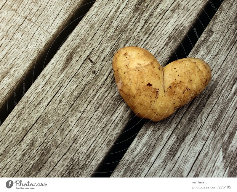 Love Wood Healthy Food Heart Birthday Dirty Nutrition Healthy Eating Romance Symbols and metaphors Diagonal Organic produce Infatuation Vegetable