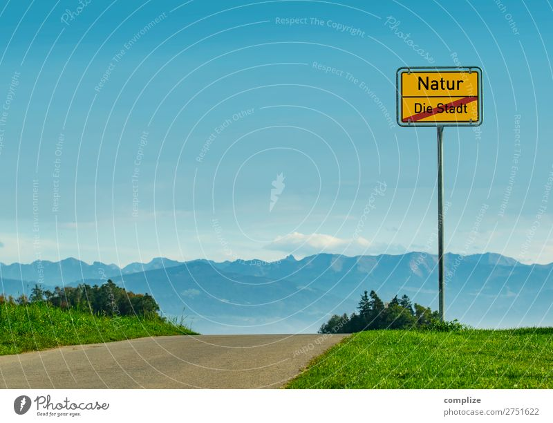 Vacation & Travel Nature Summer Plant Landscape Sun Tree Relaxation Calm Joy Far-off places Mountain Healthy Street Environment Lanes & trails