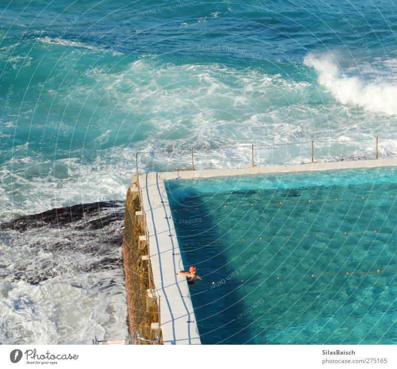 Swimming Pool Swimming & Bathing Vacation & Travel Tourism Summer Summer vacation Ocean Waves Swimming pool 1 Human being Water Coast Blue Life Colour photo