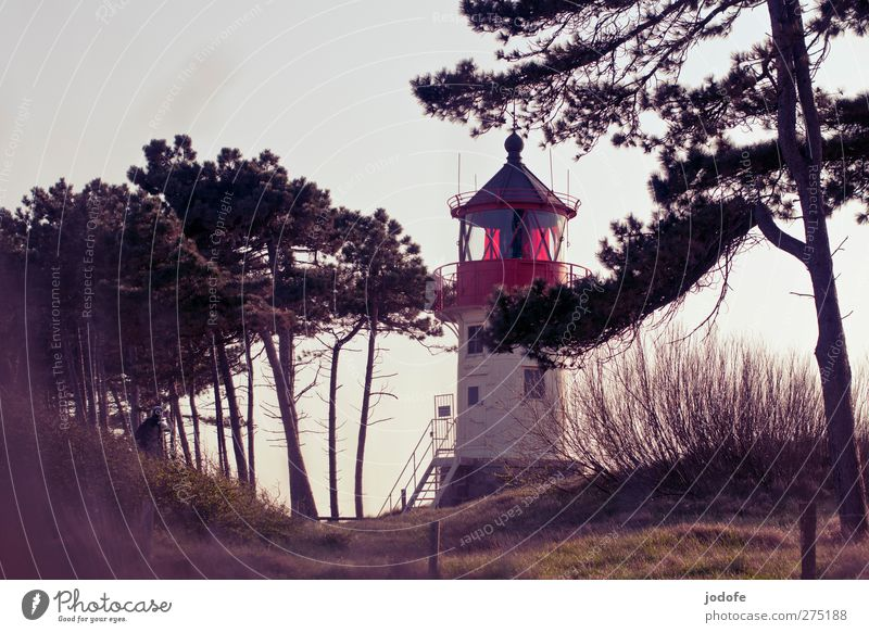 Hiddensee feel it Environment Nature Landscape Coast Baltic Sea Red Lighthouse Dusk Moody Romance Loneliness Lamp Manmade structures Pine Dune Vantage point