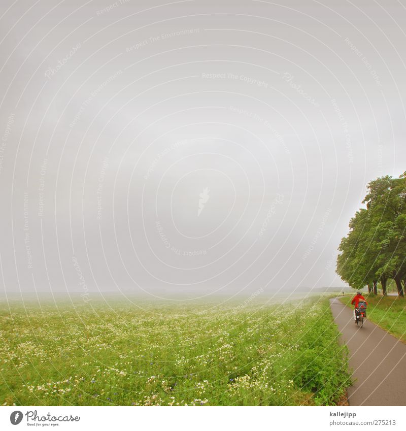 Human being Nature Vacation & Travel Tree Summer Plant Clouds Environment Far-off places Landscape Grass Freedom Air Rain Weather Bicycle