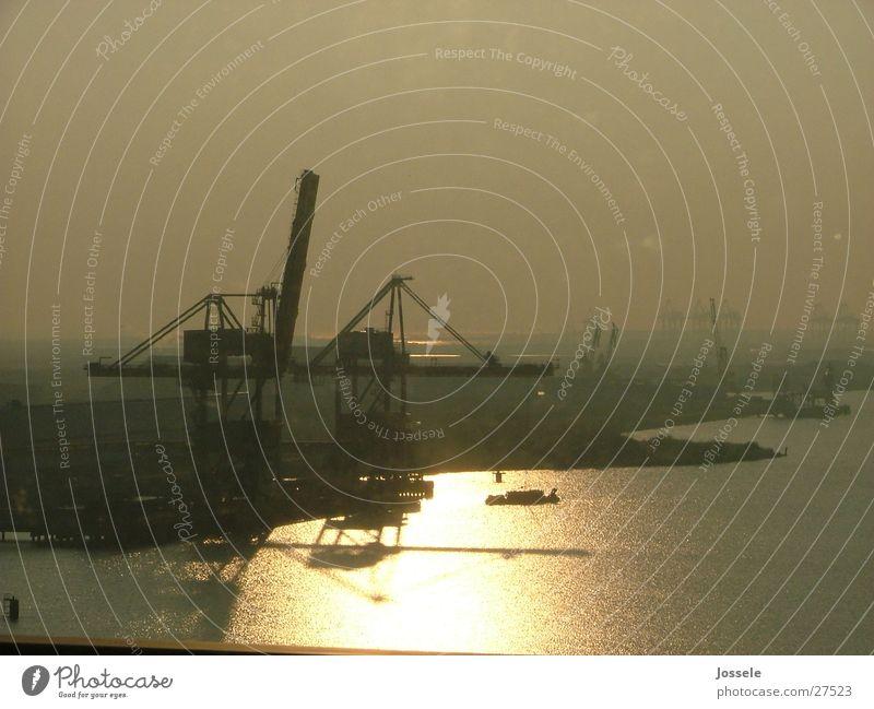 harbor Ocean Reflection Crane Industry Sun Harbour